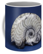 Fossilized Ammonite Coffee Mug