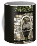 Fountain Of Ascona Coffee Mug