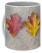 Four Autumn Leaves Coffee Mug
