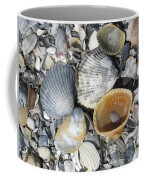 Four Beautiful Shells Coffee Mug