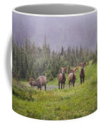 Four Brothers Coffee Mug