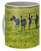 Four Zebras Coffee Mug
