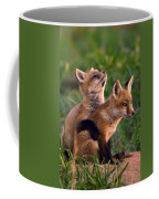 Fox Cub Buddies Coffee Mug by William Jobes