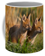 Fox Cubs At Sunrise Coffee Mug