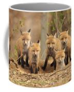 Fox Family Portrait Coffee Mug