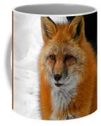 Fox Gaze Coffee Mug