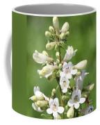 Fox Glove Coffee Mug