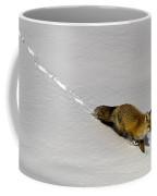 Fox In The Snow-signed Coffee Mug