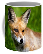 Fox Pup Coffee Mug by Fabrizio Troiani