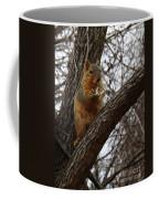 Fox Squirrel 1 Coffee Mug