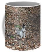 Fox Squirrel Curious Coffee Mug