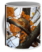 Fox Squirrel In Autumn Coffee Mug