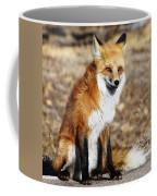 Foxy Coffee Mug by Shane Bechler