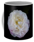 Fragility Coffee Mug