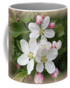 Framed Apple Blossom Coffee Mug