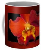 Framed Red Orchid  Coffee Mug