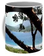 Framed Vista Coffee Mug