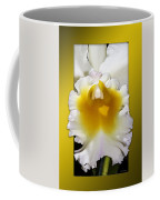 Framed White Orchid Coffee Mug