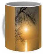 Framing The Golden Sun Coffee Mug