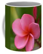 Frangipani With Dew Drops Coffee Mug