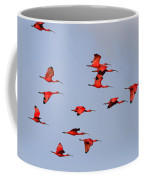 Frankly Scarlet Coffee Mug by Tony Beck