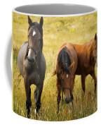 Free Happy Horse Joy On Samsoe Island Denmark  Coffee Mug