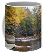 French Broad River In Fall Coffee Mug