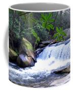 French Broad River Waterfall Coffee Mug