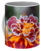 French Marigold Named Durango Red Outlined With Frost Coffee Mug