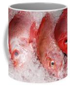 Fresh Fish 05 Coffee Mug