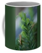 Fresh Growth Redwood Coffee Mug
