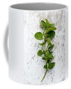 Fresh Oregano Coffee Mug