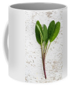 Fresh Sage Coffee Mug