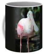 Friendly Spoonbill Coffee Mug