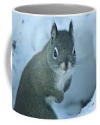 Friendly Squirrel Coffee Mug