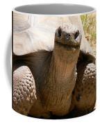 Friendly Tortoise Coffee Mug