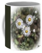 Fringed Daisy Coffee Mug
