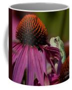 Frog And His Cone Coffee Mug