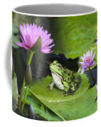 Frog And Water Lilies Coffee Mug