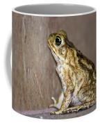 Frog-facing The Wall Coffee Mug by Miguel Hernandez