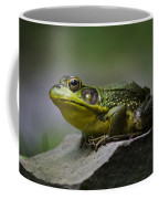 Frog Outcrop Coffee Mug