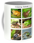 Frogs - Boxed Cards Coffee Mug