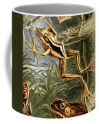 Frogs Detail Coffee Mug