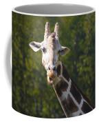 From The Top Coffee Mug