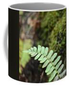 Frond Coffee Mug