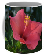 Front Porch Swing Coffee Mug