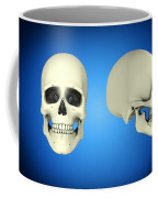 Front View And Side View Of Human Skull Coffee Mug by Stocktrek Images