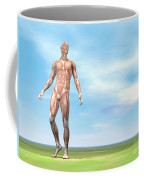 Front View Of Male Musculature Walking Coffee Mug