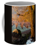 Frost In The Valley Of The Moon Coffee Mug