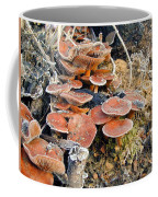 Frosted Cascading Mushrooms Coffee Mug